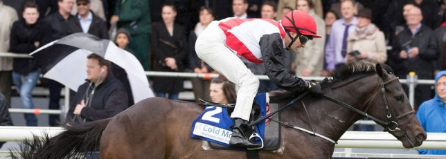 Cold Move Marble Hill Stakes – A big success!