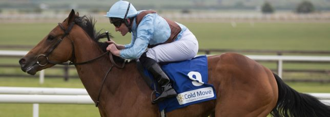 Cold Move Marble Hill Stakes 2018